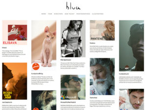 Blua Website