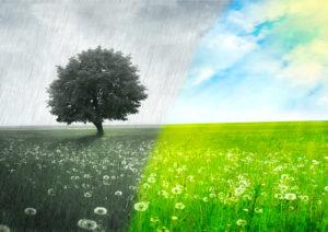 Thema: auf-sonne-folgt-regen